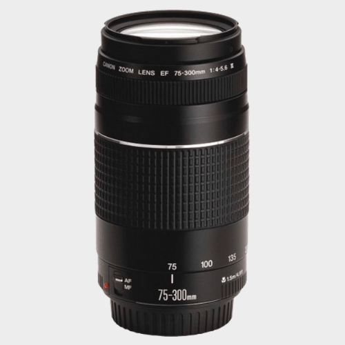 Canon 75-300 III LENS Lens price in Qatar